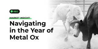 market-insight-navigating-in-the-year-of-metal-ox